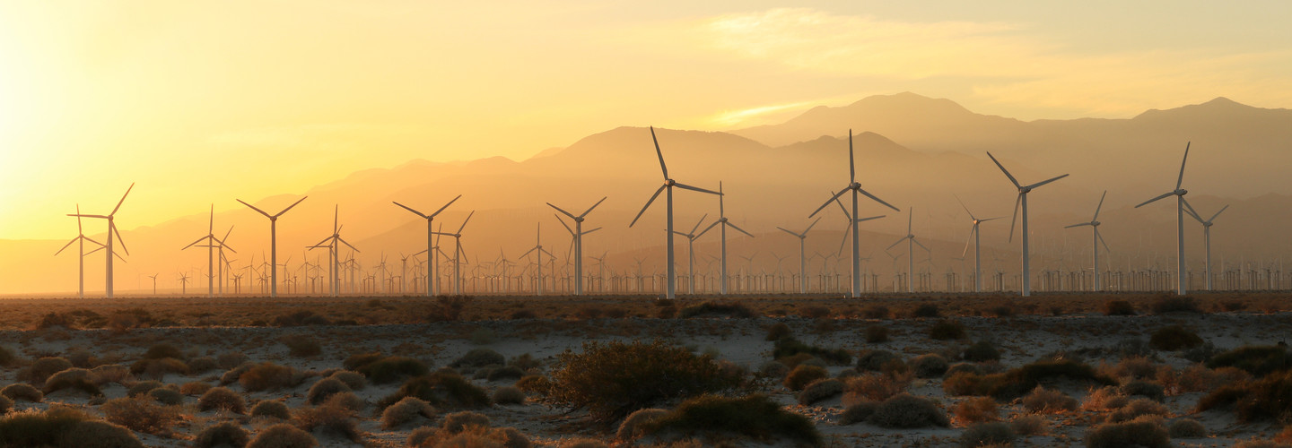 What Will the Utility of the Future Look Like? | BizTech