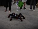 Sven the IoT Robot Spider