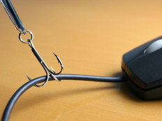 Phishing Attacks Snag Organizations Hook, Line and Sinker