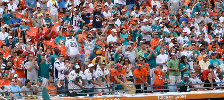Miami Dolphins fans